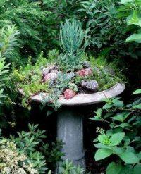 birdbathsgarden